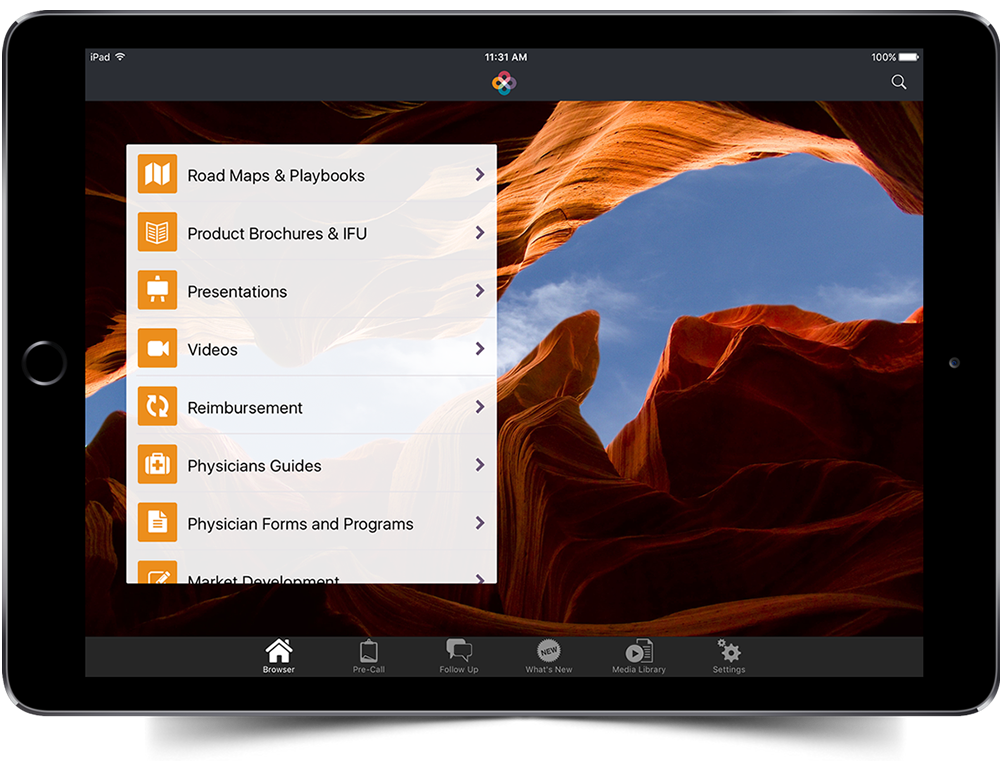 Intersect ENT iPad